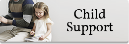 Child Support Law